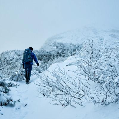 立ち込めたガスで隠れる山頂を目指す登山者の写真