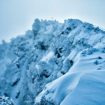霧に巻かれた視界不良の東天狗岳の山頂(長野県)の写真