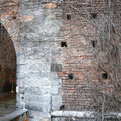 蔦の這うレンガ造りの城門(スフォルツェスコ城)の写真