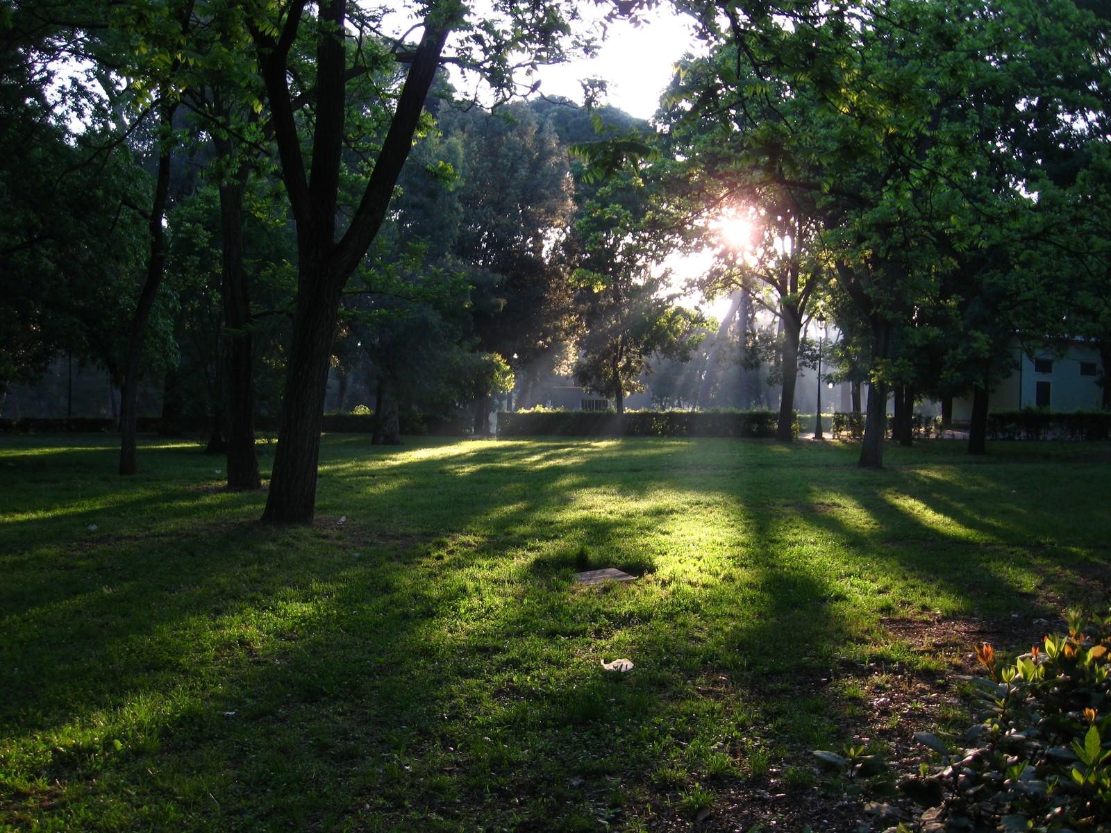 「ローマにあるボルゲーゼ公園の日差し(イタリア)」
