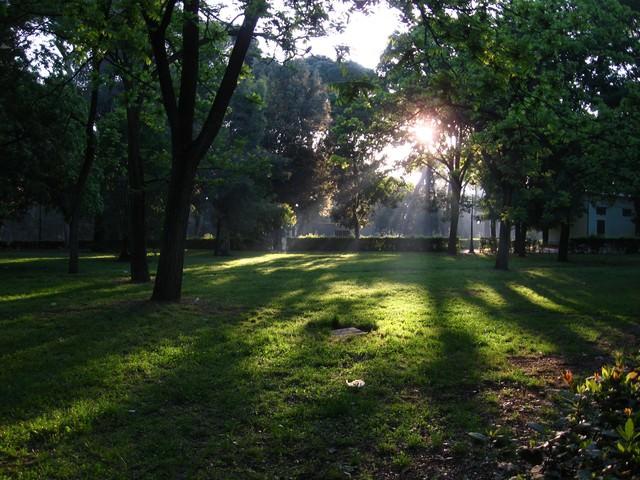 ローマにあるボルゲーゼ公園の日差し(イタリア)の写真