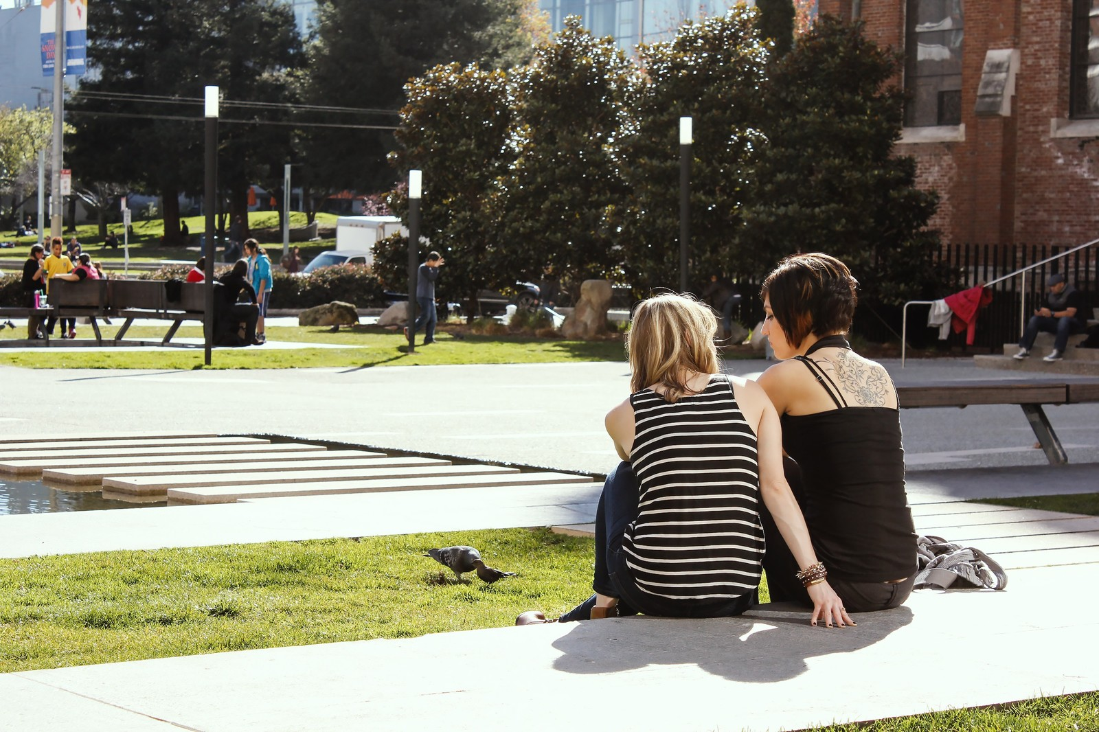 「海外の大学海外の大学」のフリー写真素材を拡大