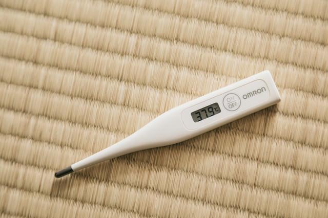畳と体温計の写真