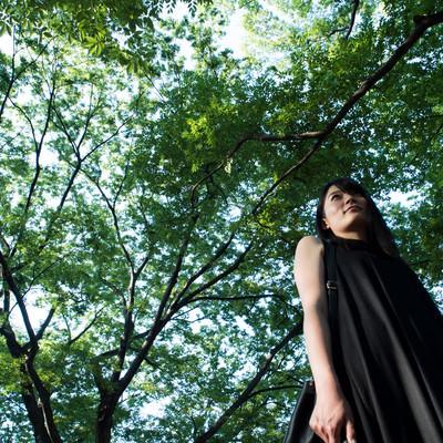 「木漏れ日が低く見える高身長の女性」の写真素材