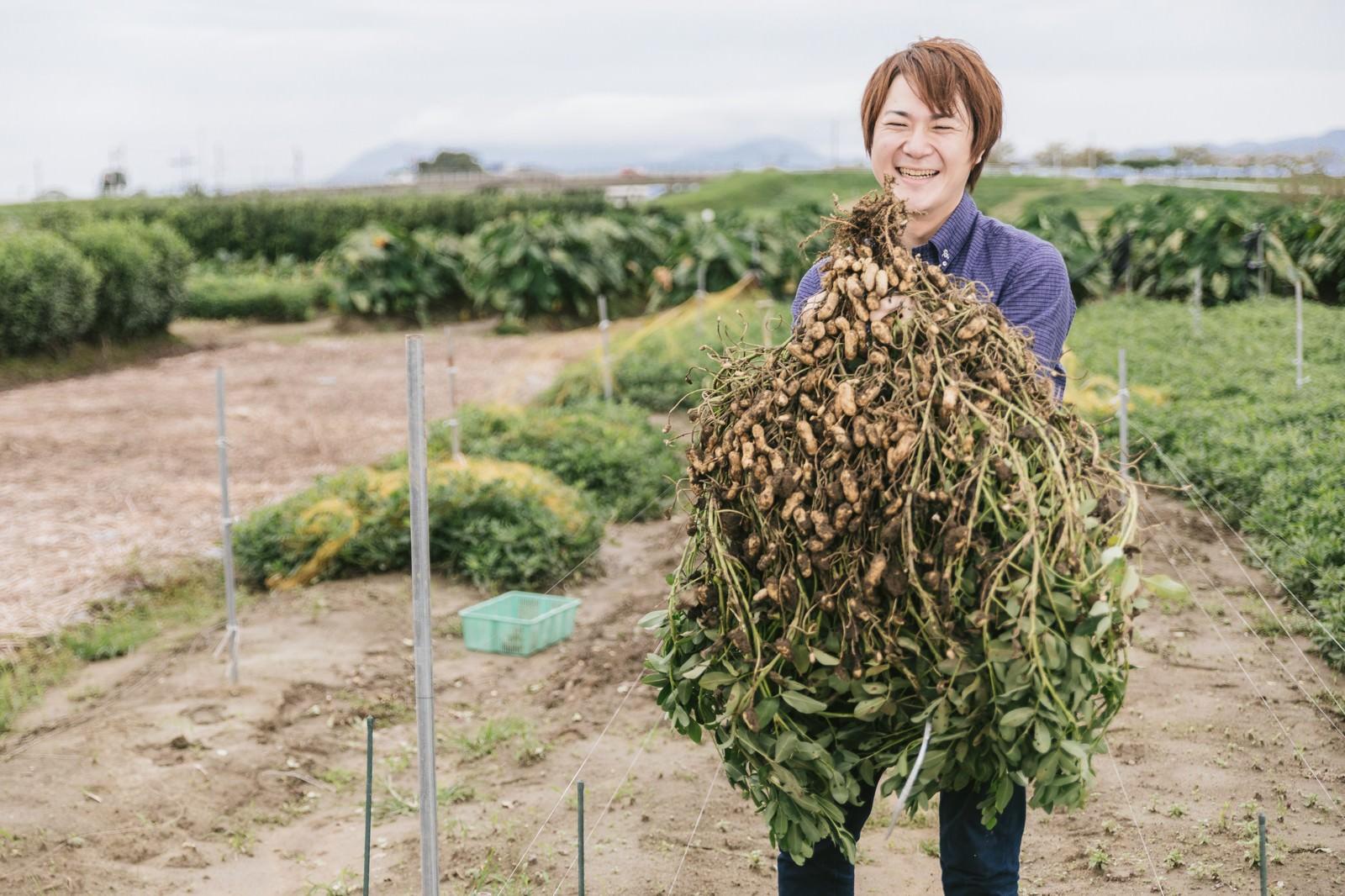 「こんなに大きい落花生が採れました!こんなに大きい落花生が採れました!」[モデル:五十嵐夫妻]のフリー写真素材を拡大