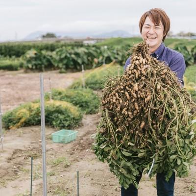 「こんなに大きい落花生が採れました!」の写真素材