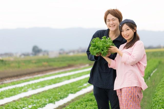 福岡県大刀洗町の採れたてリーフレタスをアピールする夫婦の写真