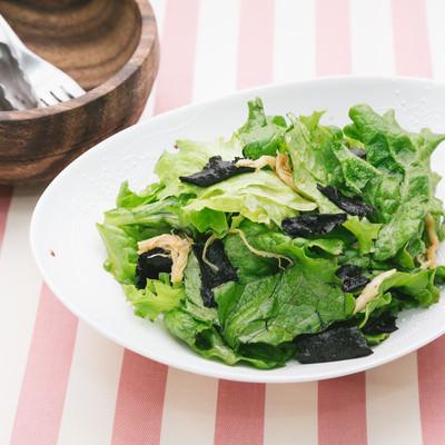 「グリーンレタスをふんだんに使ったサラダ」の写真素材