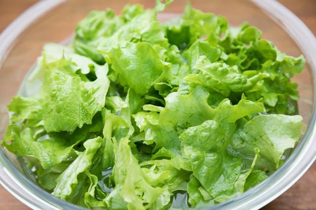 サラダ用のグリーンレタスの写真