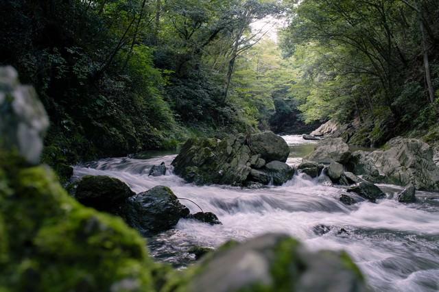 御荷鉾緑色岩が美しい渓谷の写真