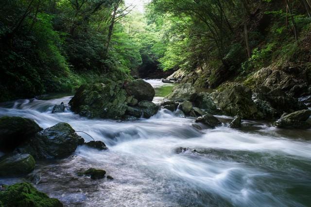 埼玉県の三波渓谷の写真