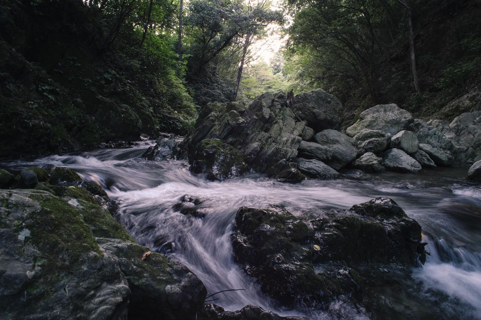 「川の水と岩の荒々しさ(三波渓谷の夏) | 写真の無料素材・フリー素材 - ぱくたそ」の写真