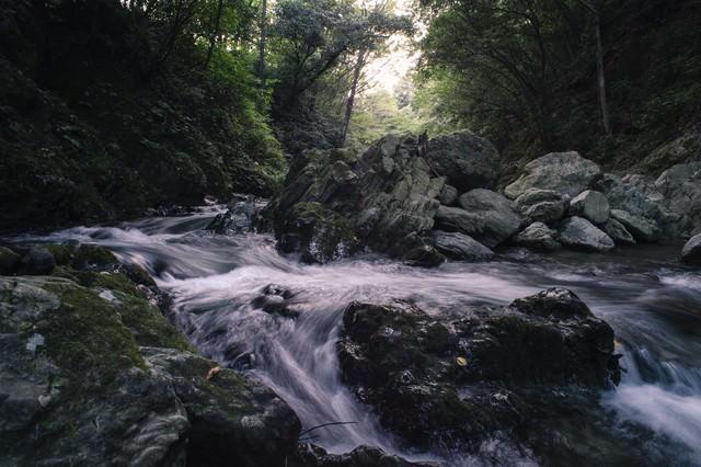 川の水と岩の荒々しさ(三波渓谷の夏)の写真