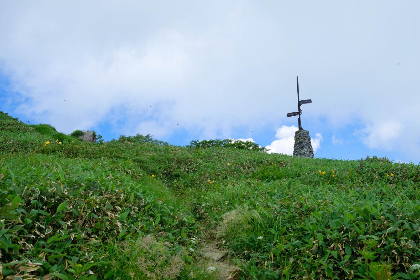 「登山道に佇む道標」の写真