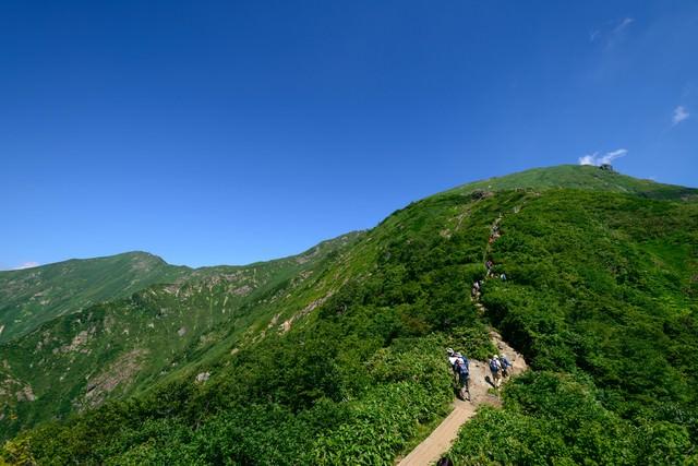 山頂へと続く登山道の写真