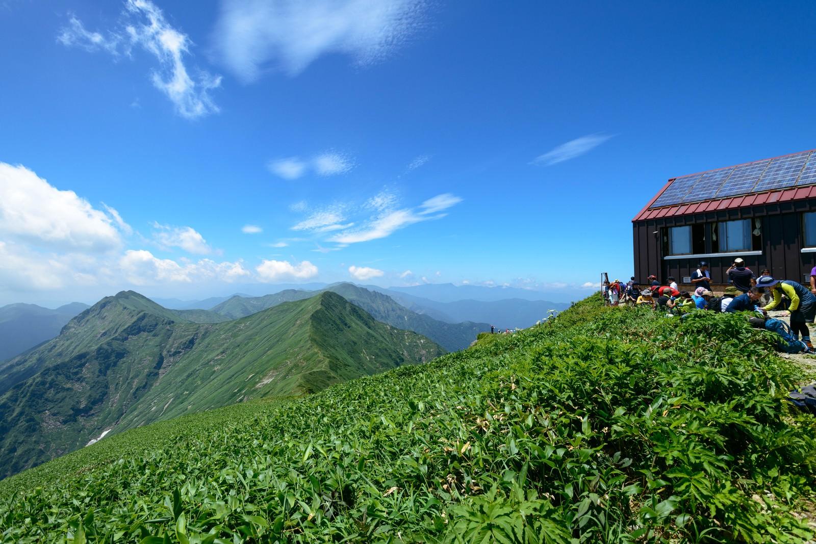 「肩の小屋から望む谷川岳主脈」の写真