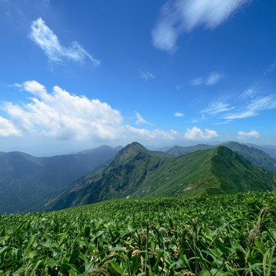 延々と続く稜線の美しさの写真