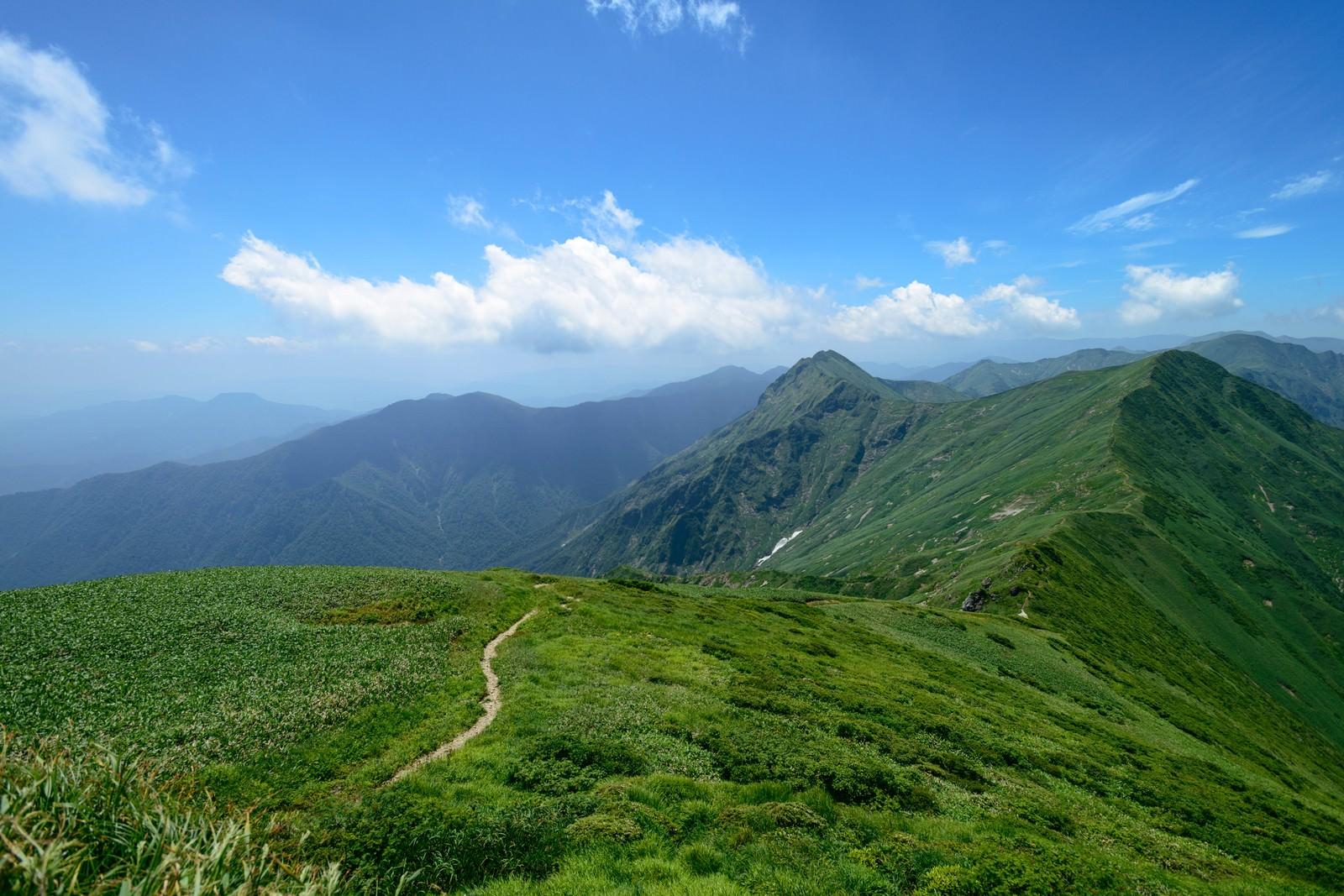 「谷川岳主流の登山道」