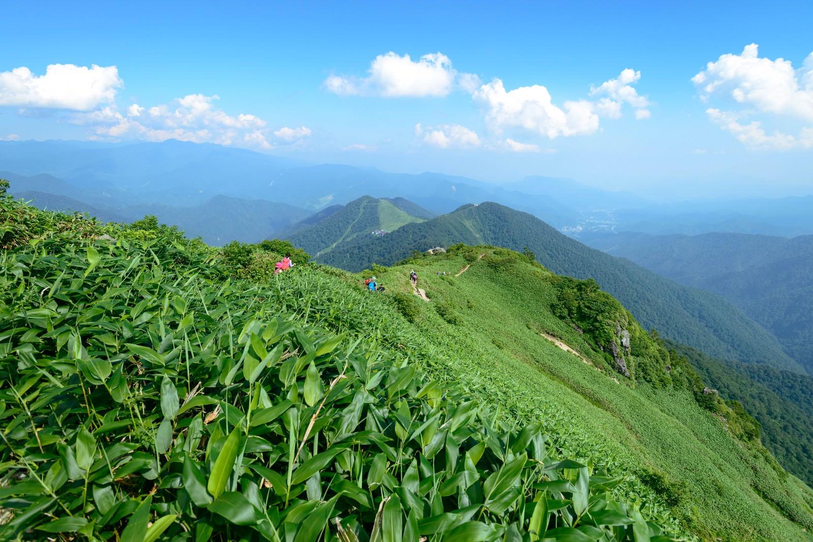 「霞がかる稜線と登山道」の写真