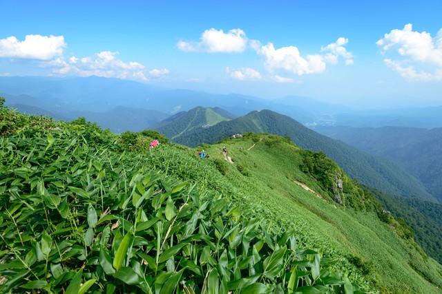 霞がかる稜線と登山道の写真