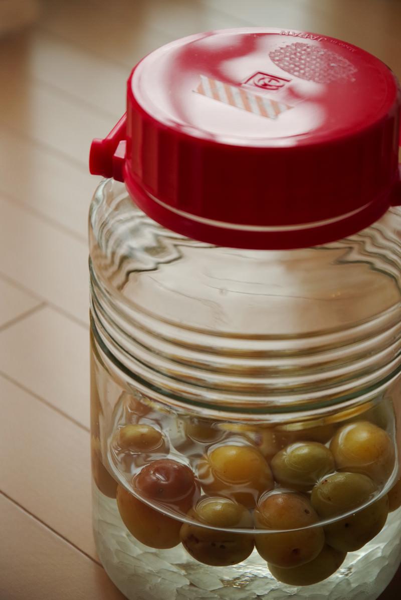 「角砂糖と梅を入れた果実酒瓶」の写真