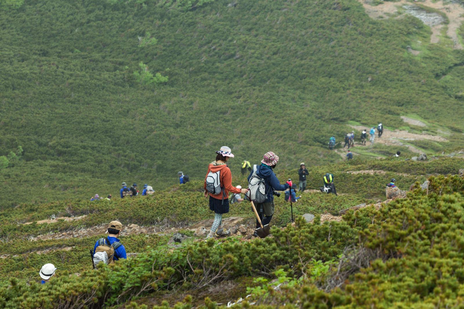 「乗鞍新登山道を歩く登山者達」の写真