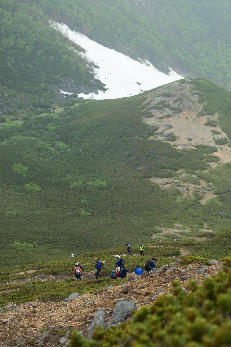 「傾斜のある登山道を下山する登山者の列」の写真