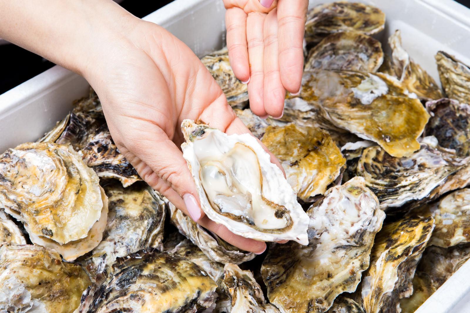 「新鮮な恵比須牡蠣はこちらです」の写真