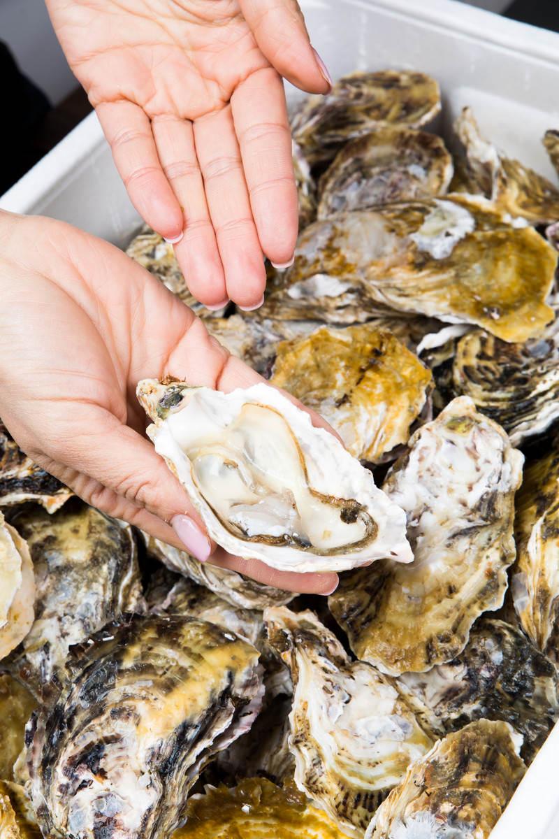 「おいしくて新鮮な生牡蠣はいかがですか?おいしくて新鮮な生牡蠣はいかがですか?」のフリー写真素材を拡大