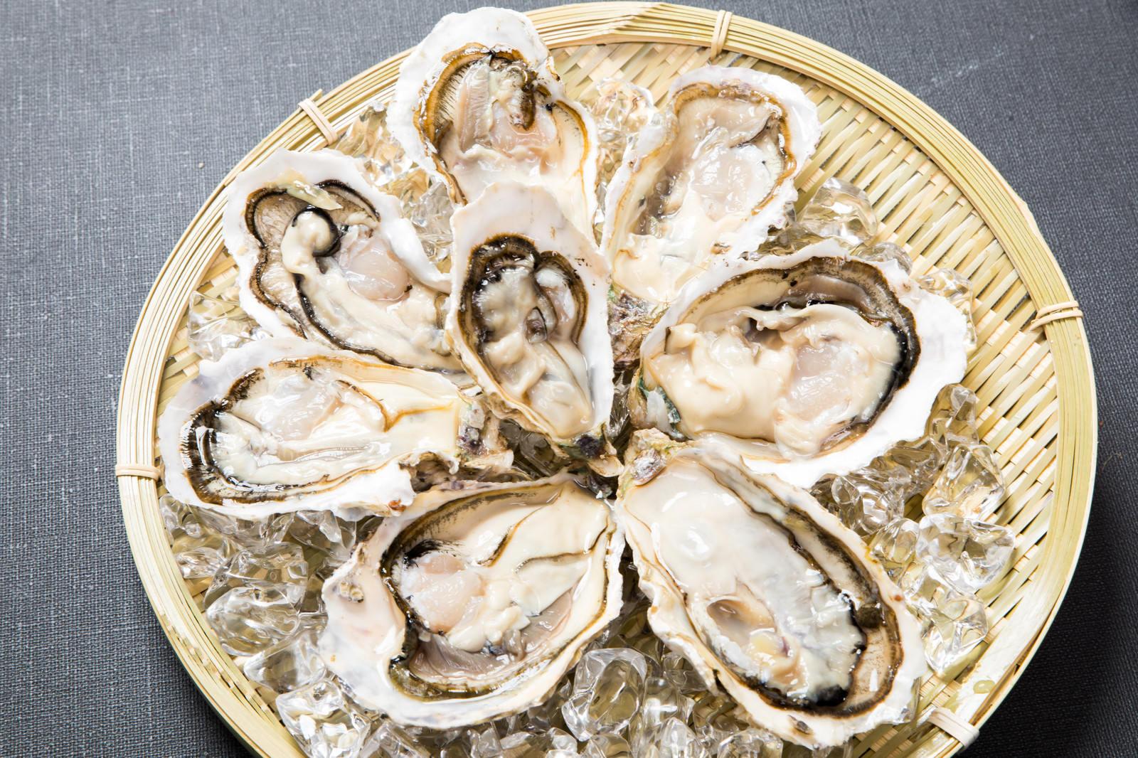 「プリッとした新鮮な生牡蠣(恵比須牡蠣)プリッとした新鮮な生牡蠣(恵比須牡蠣)」のフリー写真素材を拡大