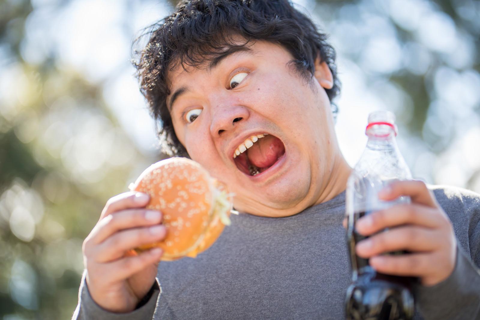 「大好物のハンバーガーを与えてみた」の写真[モデル:段田隼人]
