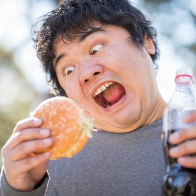 「大好物のハンバーガーを与えてみた」の写真素材