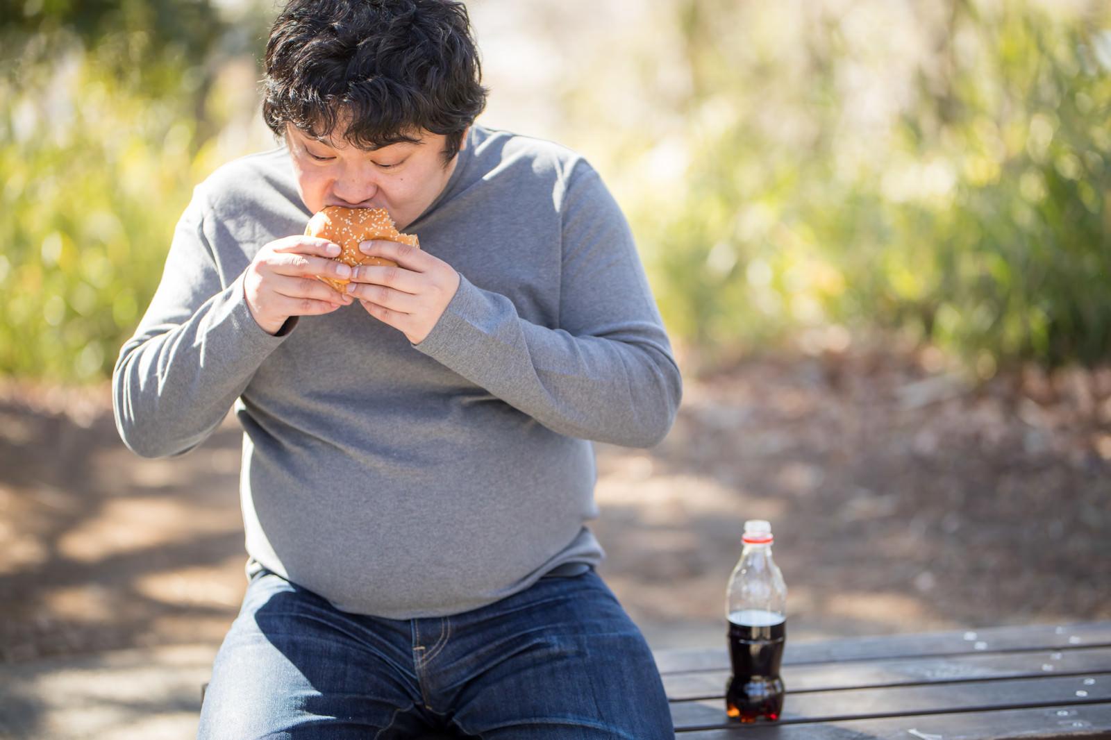「ジャンクフードにハマってしまう男性(メタボ・肥満)ジャンクフードにハマってしまう男性(メタボ・肥満)」[モデル:段田隼人]のフリー写真素材を拡大