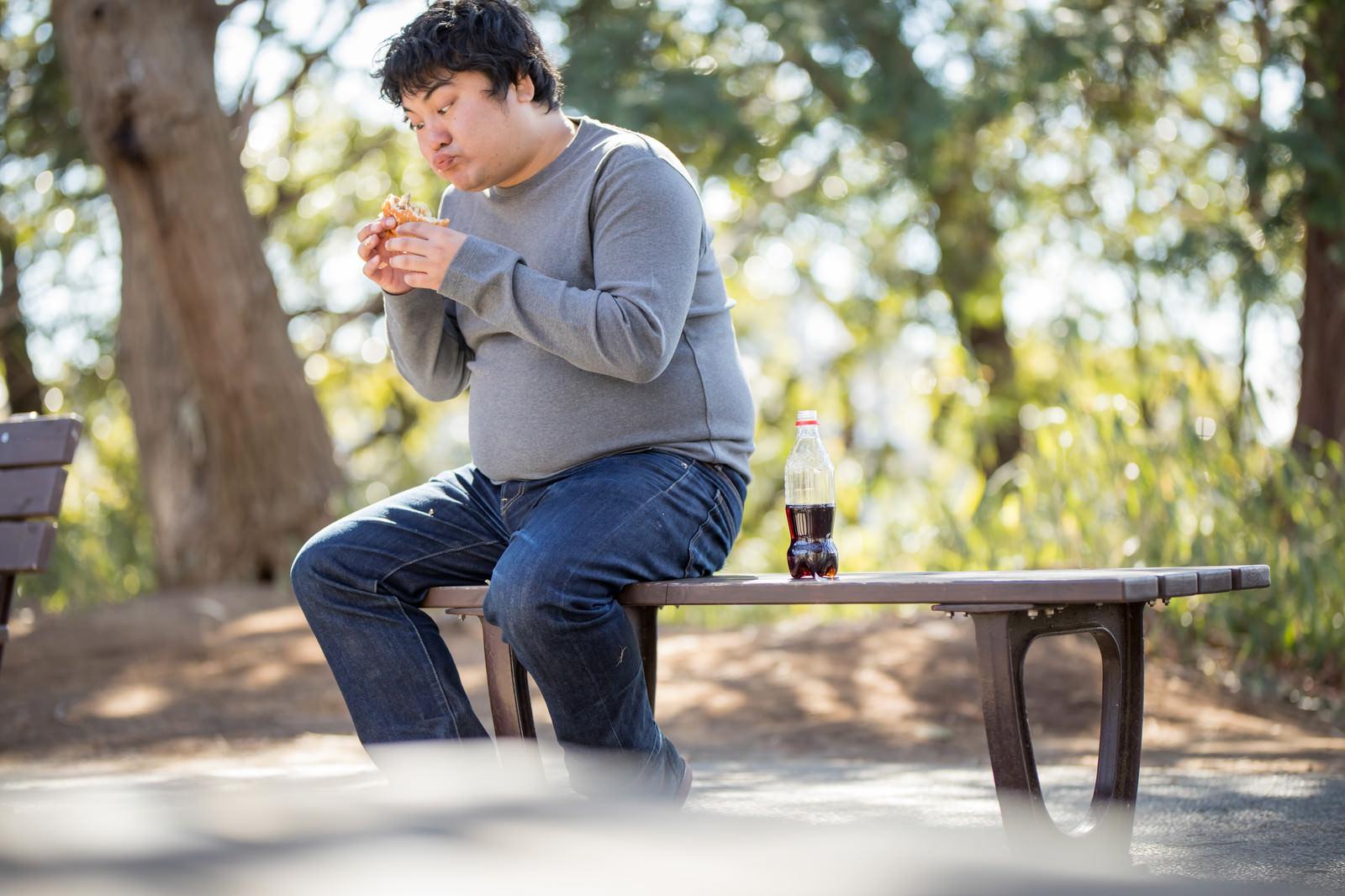 「公園のベンチでハンバーガーを貪るメタボ男子」の写真[モデル:段田隼人]