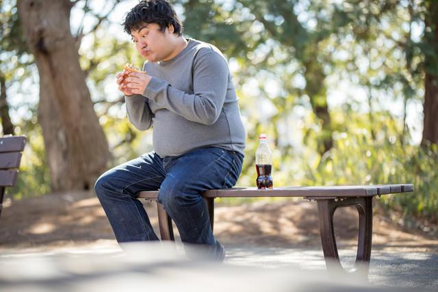 公園のベンチでハンバーガーを貪るメタボ男子の写真