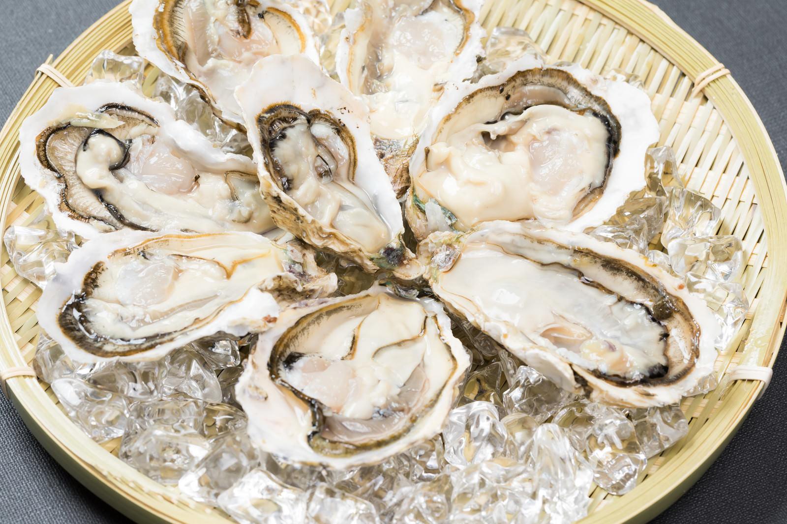 「ザルの上に盛り付けされた生牡蠣(恵比須牡蠣)ザルの上に盛り付けされた生牡蠣(恵比須牡蠣)」のフリー写真素材を拡大