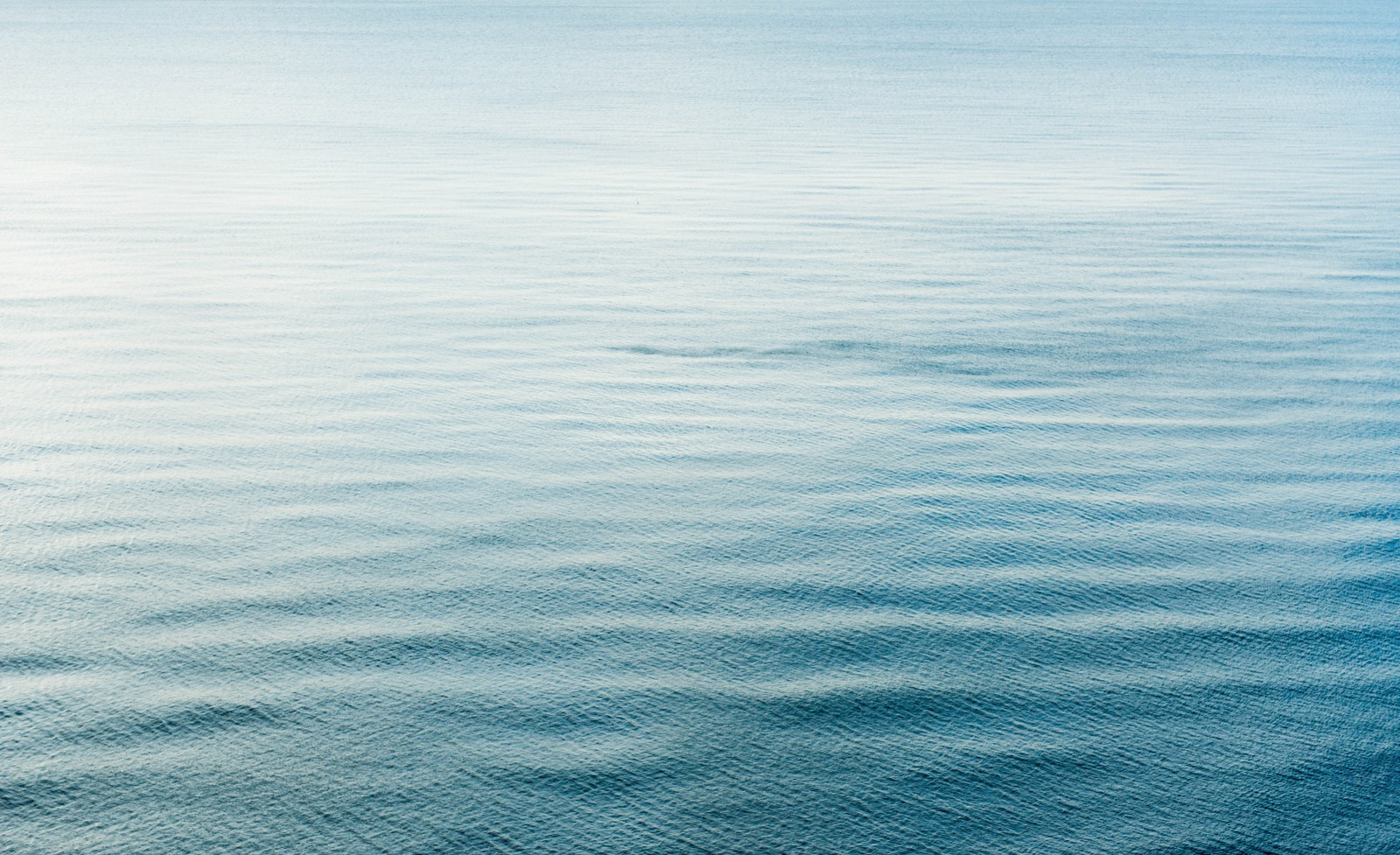 「海の波」の写真