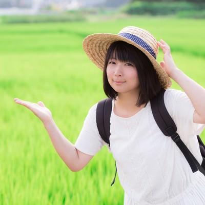 「田舎の田んぼと麦わら女子」の写真素材