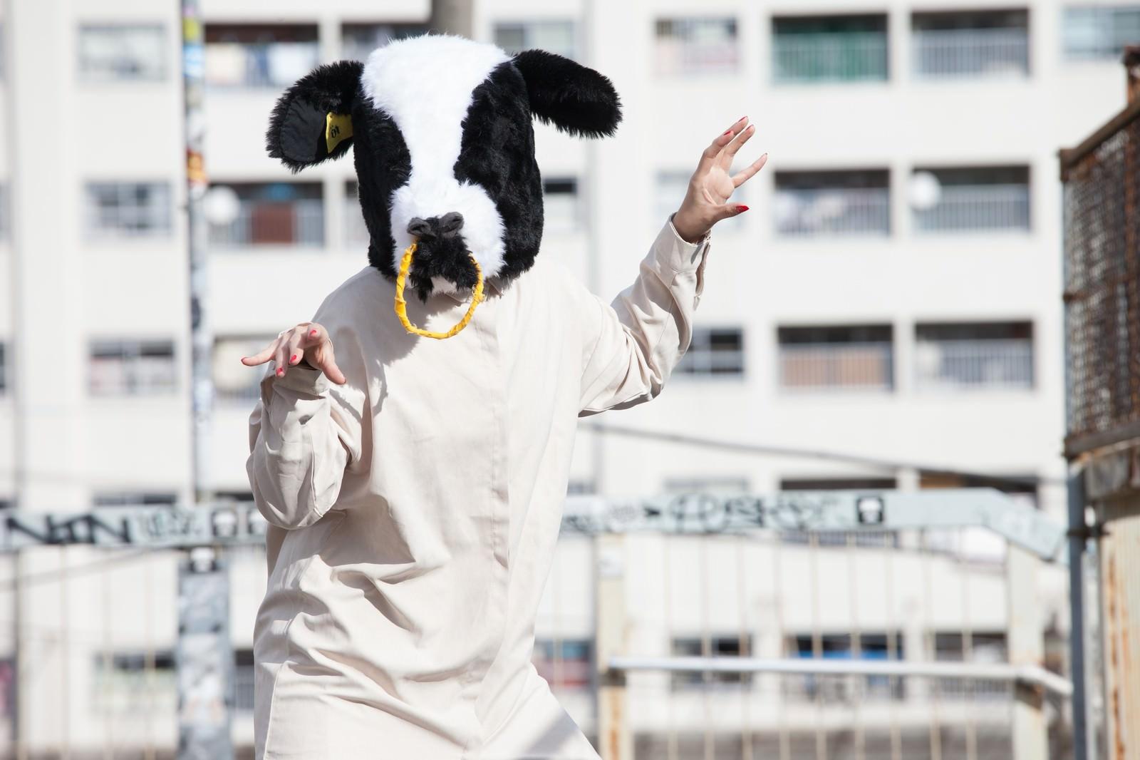 「牛のかぶりものをした挙動不審な女性」の写真[モデル:古性のっち]