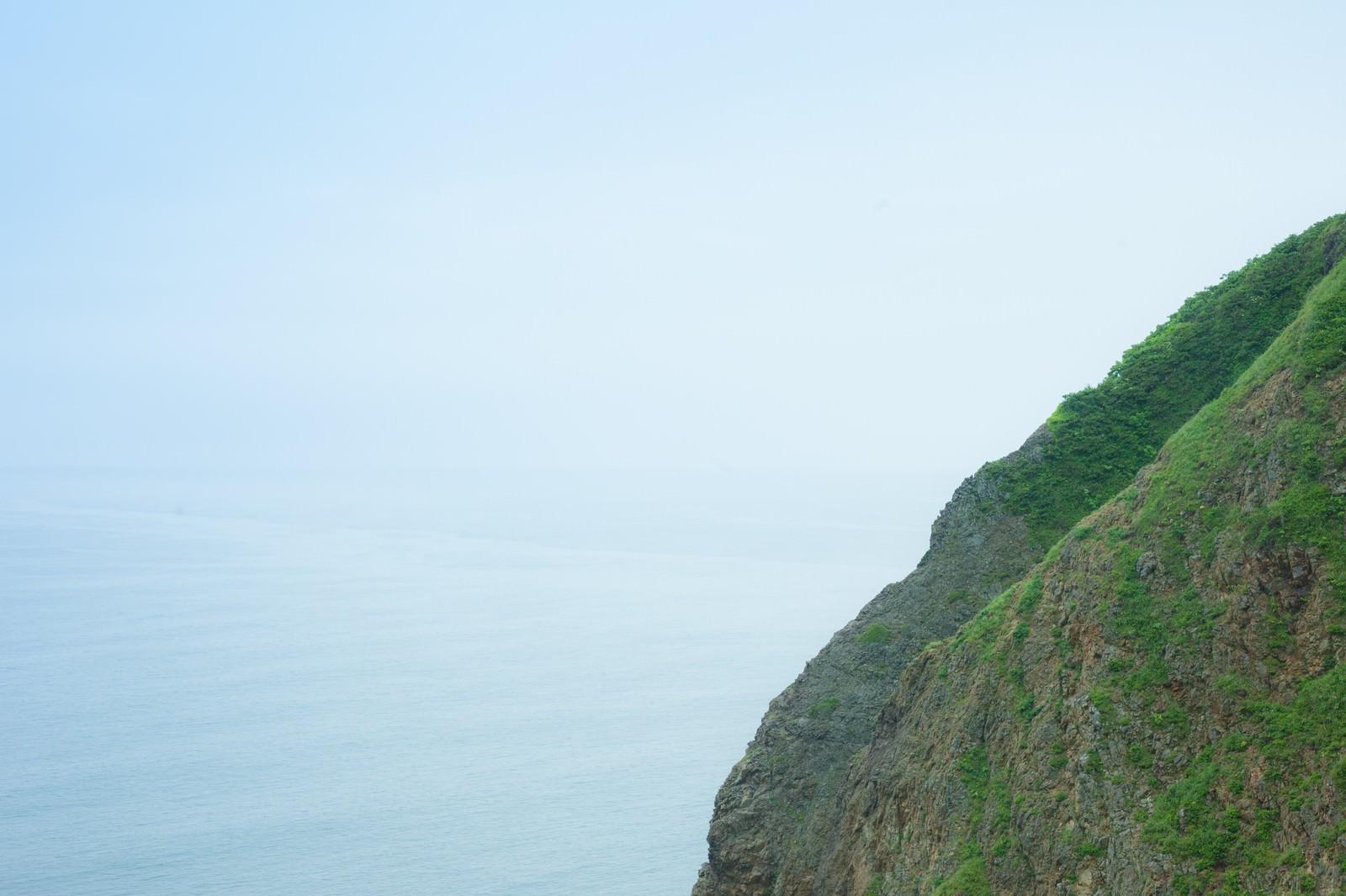 「緑の島と海」の写真