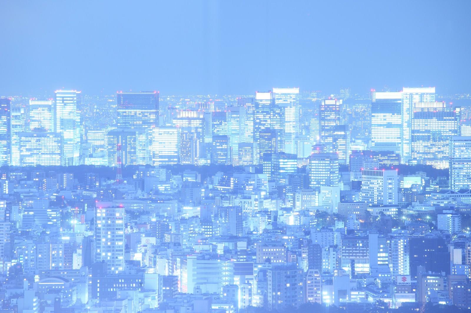「輝く光を放つ東京夜景」の写真