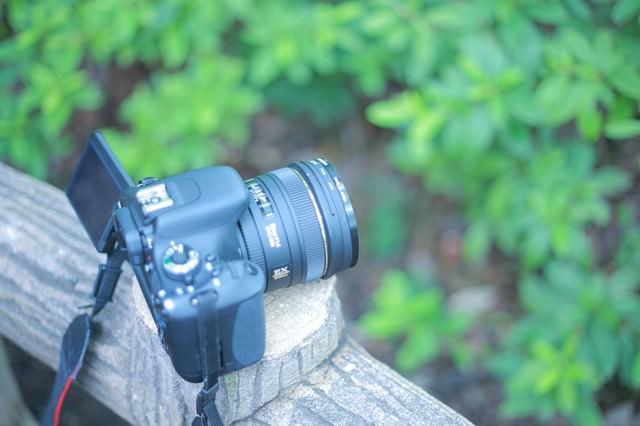 一眼レフカメラ講習中の写真