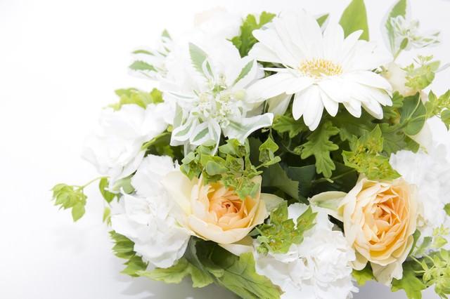白い花の贈りもの