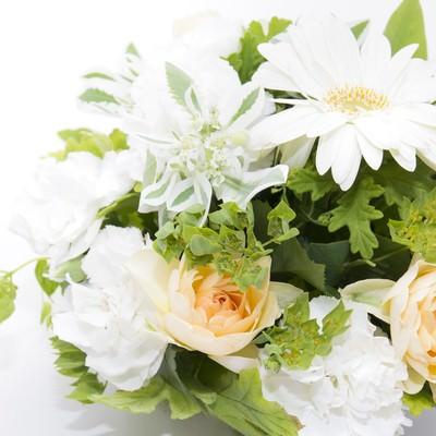 白い花の贈りものの写真