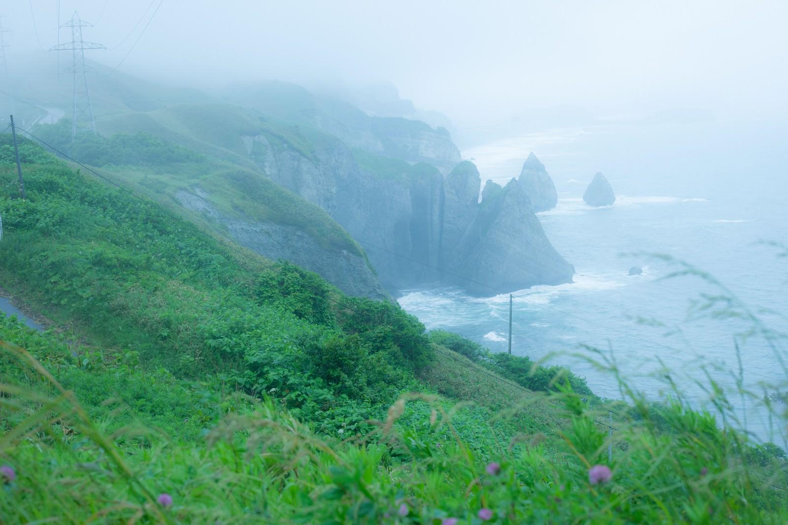 「崖のある海、大自然とぼく」の写真