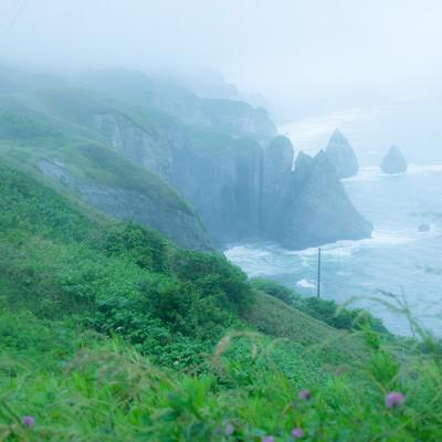 「崖のある海、大自然とぼく」の写真素材