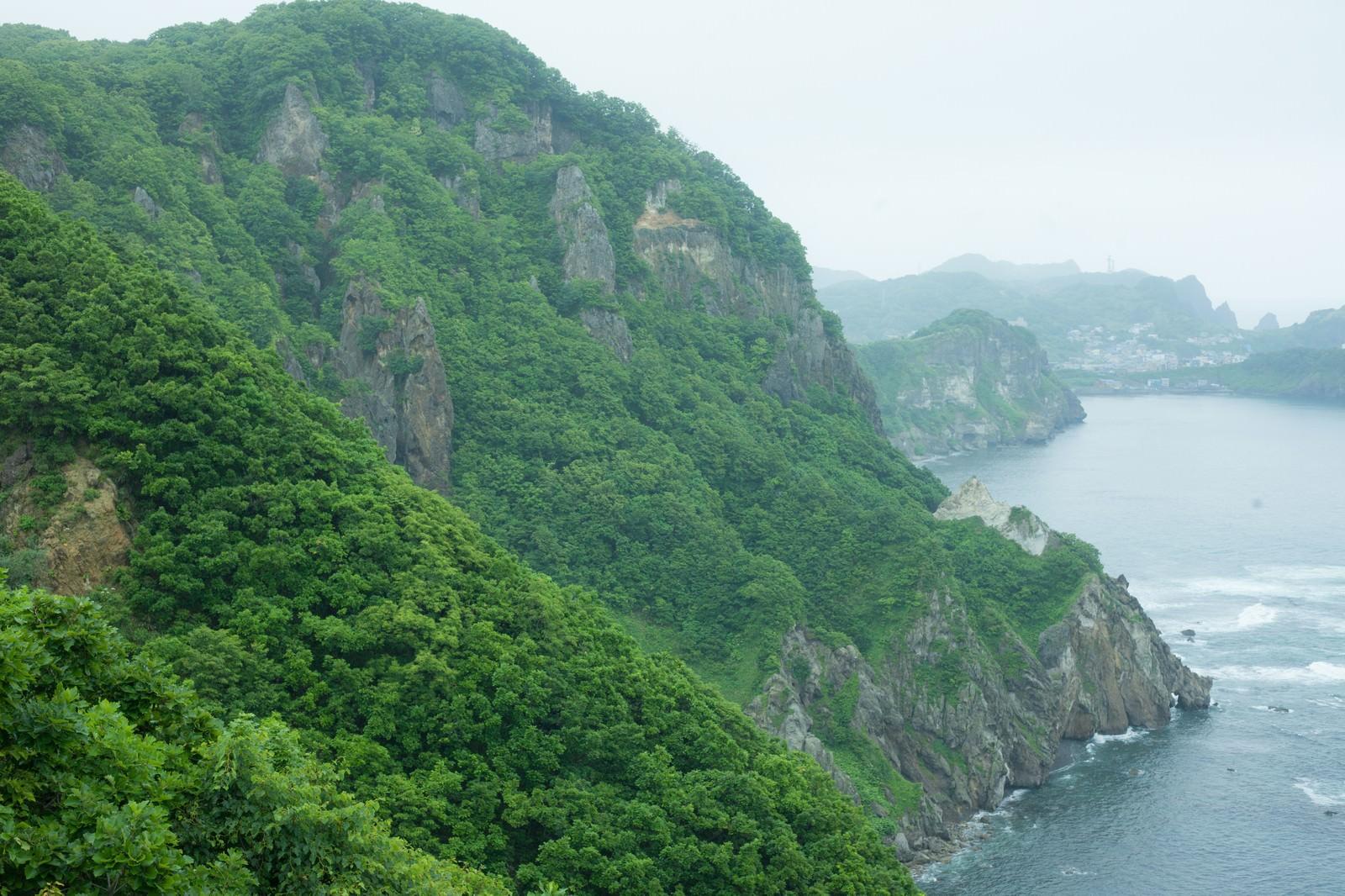 「自然豊かなな山肌」の写真