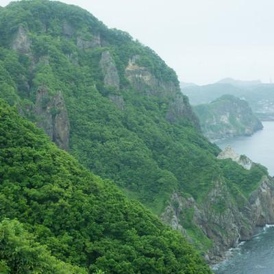 自然豊かなな山肌の写真