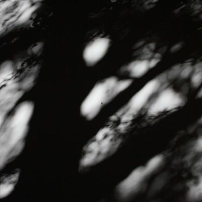 「思惑が乱れる影」の写真素材
