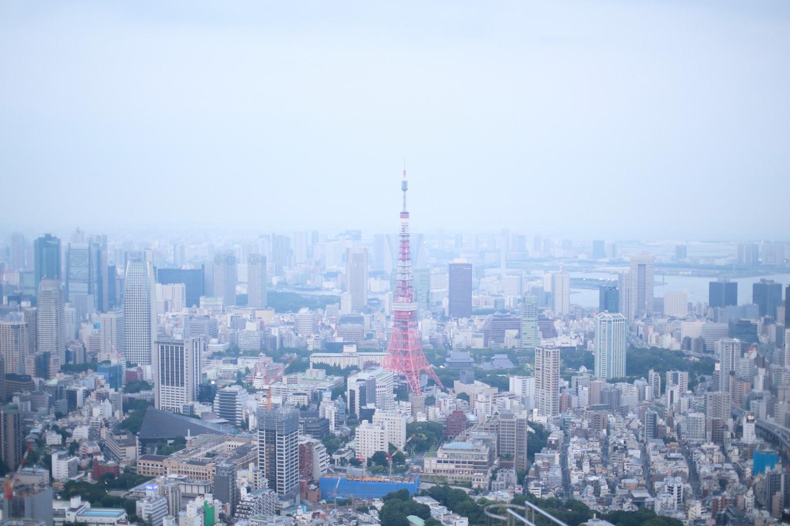 「淡い雰囲気の東京タワー周辺」の写真
